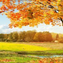 Базовый гардероб на осень. 7 вещей