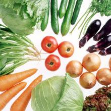 Рецепты вегетарианских блюд: овощные котлеты с пюре