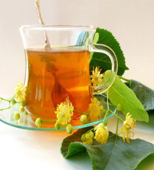 чай от паразитов состав в домашних условиях