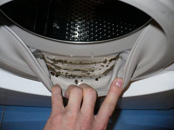 запах в стиральной машине1