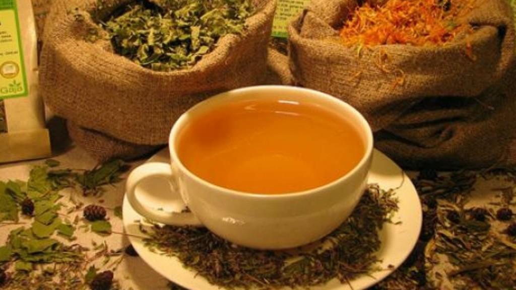 лечение чай от паразитов